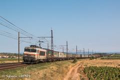 "L' ""Ambrogio"" 58883 Hourcade - Sibelin remorqué par la cadette BB 7440 (Sylvain COSTES) Tags: locomotive bb7200 bb7400 train railway vignes ambrogio containers narbonne corbières"