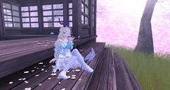 Can you hear it on the wind~? (Bunny doll) Tags: second life secondlife sl slanime kawaii cute dragon kemonomimi ash2 asr philo sophia japanese kimono smoking pipe socks girl