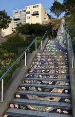 #16ThAvenue #TiledSteps #GoldenGateHeights #SanFrancisco (Σταύρος) Tags: lookingup goingup staircase 16thavenue tiledsteps goldengateheights sanfrancisco kalifornien californië kalifornia καλιφόρνια カリフォルニア州 캘리포니아 주 cali californie california northerncalifornia カリフォルニア 加州 калифорния แคลิฟอร์เนีย norcal كاليفورنيا sf city sfist thecity санфранциско sãofrancisco saofrancisco サンフランシスコ 샌프란시스코 聖弗朗西斯科 سانفرانسيسكو