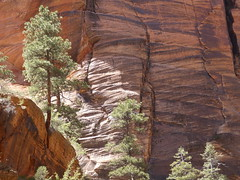 P1000503 (odetojoy24) Tags: zion utah angels landing hiking