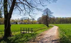 Aprillandschaft 😀 München Lochhausen (Chridage) Tags: baum bäume lochhausen münchen munich bayern landstrase gras feld park himmel