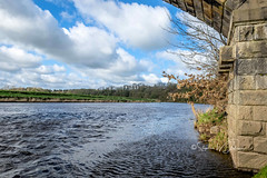 SJ1_6270 - River Ribble (SWJuk) Tags: clitheroe england unitedkingdom swjuk uk gb britain lancashire hurstgreen river water riverribble riverbank flowing ripples trees stonebuilt bluesky clouds countryside waterscape scenery view 2019 mar2019 spring nikon d7200 nikond7200 nikkor1755mmf28 rawnef lightroomclassiccc