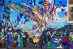 Chouette ! (Edgard.V) Tags: paris parigi streetart urban art arte urbano callejero mural oiseau bird ave uccello uffo hibou