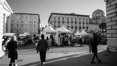 (Antonio Marano) Tags: amazing beautiful bestoftheday blackwhite cute fashion follow followme food fun girl happy instagood landscape love marantoni2004 me sales smile summer sunset swag tagsforlikes tbt trieste