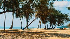 Desaru, Bandar Penawar, Johor (alfredsridar) Tags: beach holiday surf sand slippers summer cafe palm trees sun relax orange teal women family