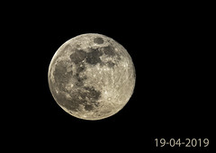 Full Moon (Fred Christoffels) Tags: moon canon vanguard tamron 150600 nature outdoor 2019
