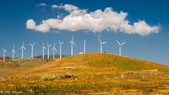 Winds of Change Pic #2 (Picture-Perfect Pixels) Tags: exploreapril262019 windenergy cleanpower landscape tehachapiwindfarm windmill hills magnificientclouds clouds beautifullighting windturbines california unitedstates tehachapi