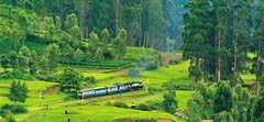 Ooty (Exploring Bharat) Tags: india travel tourist trekking beauty places nature hillstation mountain resorts exploringbharat