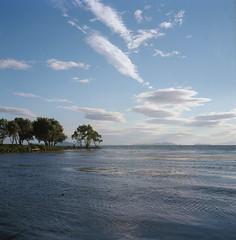 lake Biwa (Vinzent M) Tags: nagahama 長浜 lake biwa 琵琶湖 japan zniv tlr rollei rolleiflex 35 zeiss planar 日本 fuji provia kansai 関西 shiga 滋賀