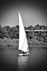 Sailing Away (explored) (pjpink) Tags: sail sailing felucca boat nile nileriver river water egypt january 2019 winter pjpink 2catswithcameras blackandwhite bw monochrome