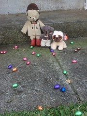 Paddington and the Easter Egg Hunt 7. (raaen99) Tags: paddington paddingtonbear paddybear paddy teddy teddybear bear softtoy vintage vintageteddy vintageteddybear vintagetoy handmade softie plush cute cuddly soft scout scoutbear cuddle hug littlebearhug biglittlebearhug knitting knitted knittedtoy fairtrade fairtradebear scouthouse easter easteregg easterfood eastereggs eggs chocolateegg chocolateeggs foil easterchocolateeggs chocolateeasteregg chocolateeastereggs haighschocolate haighschocolateeasteregg haighseasteregg easterbilby easterduck confectionery chocolate chocolates sweetmeats sweetmeat garden grass lawn leaves plants eastersunday easteregghunt easter2019 pâques happyeaster joyeusespâques froheostern ostern pasen vrolijkpasen 复活节快乐 eastersundaymorning eastermorning morning pug beanniebaby pugdog