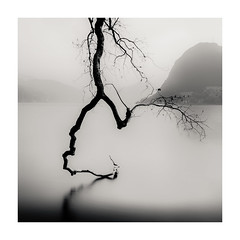 Swinging On The Water (LorenzoBPhoto) Tags: minimal minimalism blackandwhite monochrome mono square photography landscape fog lake waterscape reflection switzerland lugano travel trip trees mountains beautiful canon tamron ndfilters longexposure paesaggio biancoenero diapositive