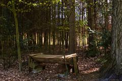 Eversen_Umland-13524 (extrapeter) Tags: bergen niedersachsen deutschland