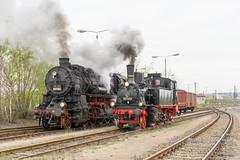 Die beiden Länderbahnloks 58 311 (badische G12) und 91 134 (preuß. T9.2) nebeneinander (stephanklotzsch) Tags: dampfloktreffen dresden dresdener 2019 zug eisenbahn lok lokomotive dampflok preusische güterzug sonderzug saxen deutschland saxony germany steam locomotive loco 58 311 badstb g12 preus t 92 g 12 länderbahnlokomotive