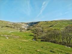 Malhamdale (tubblesnap) Tags: yorkshire dales malham cove limestone plants clint gryke rocks stream stunning beautiful landscape scenery fields