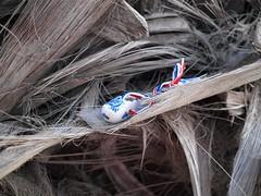 Обувь (unicorn7unicorn) Tags: набережная дерево обувь wah