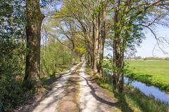Rondje Naardermeer (Ralph Apeldoorn) Tags: naardermeer nature natuur natuurmonumenten road rondjenaardermeer unpaved weg netherlands naarden noordholland nederland