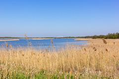 Naardermeer (Ralph Apeldoorn) Tags: lake meer naardermeer nature natuur natuurmonumenten rondjenaardermeer netherlands naarden noordholland nederland