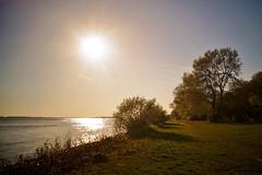 (farmspeedracer) Tags: spring april river sunset sun ray light 2019 shore sky reflection avril fine germany