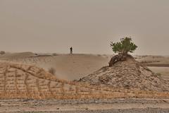 PEK2FR | Taklamakan Desert Crossing (jan.martin) Tags: ctrek cn chine 新疆 sinkiang 新 中华人民共和国 中国 xinjiang xj china zhōngguó cn2de roadtrip taklamakan desert pek2fr 2018
