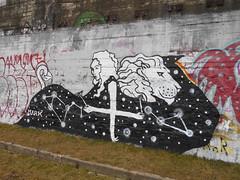 793 (en-ri) Tags: mark oroscopo bianco nero ragazza girl virgin vergine lion leone ttorino wall muro graffiti writing costellazioni parco dora