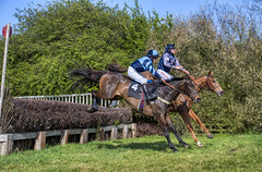 Dingley Races (sho5572) Tags: p2p fence leicestershire april 2019 fun countryside outdoors outdoor sport flickr nikon dingley pointtopoint woodlandpytchley racing horses horse