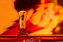 "45 ANOS DE LIBERDADE"", ILUSTRATIVO AO 25 DE ABRIL DE 1974 (paulomarquesfotografia) Tags: 25 de abril 1974 pentax k5 fa 100mm f28 paulo marques gota agua water drop reflexo invertido faster macro splash"