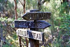 20190419-11-Very old wooden sign (Roger T Wong) Tags: 2019 australia cradlemountainlakestclairnationalpark lakestclair np nationalpark rogertwong sel24105g sony24105 sonya7iii sonyalpha7iii sonyfe24105mmf4goss sonyilce7m3 tasmania bushwalk hike outdoors sign tramp trek walk wooden