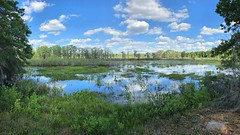 Lake Lafayette (readerwalker) Tags: panoramas landscapes lakes tallahassee iphonephotos