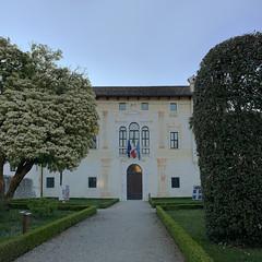 (Paolo Cozzarizza) Tags: italia friuliveneziagiulia pordenone spilimbergo scorcio alba municipio muro alberi piante mosaico