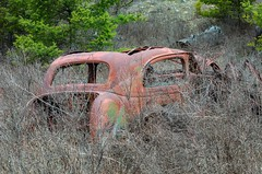 Moonroof (garshna) Tags: rusty ruined automobile car brush hiding abandoned broken trashed