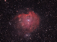 NGC 2174 The Monkey Head Nebula (rex.on.life) Tags: nebula canon meade astronomy astrophotography lightpollution longexposure stars starcluster galaxy startrails skywatcher nikon messier lookup sleepcanwait