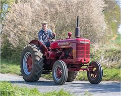 Shudy Camps Tractor Run 2019 (Linton Snapper) Tags: tonysmith tractor tractorsdiggers mccormick mccormickstandardw4 cambridgeshire agricultural farming lintonsnapper