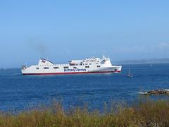 19 04 16 BF Connemara Roscoff (5) (pghcork) Tags: brittanyferries brittany bretagne roscoff connemara ferry ferries carferry 2019