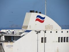 19 04 16 BF Connemara Roscoff (13) (pghcork) Tags: brittanyferries brittany bretagne roscoff connemara ferry ferries carferry 2019