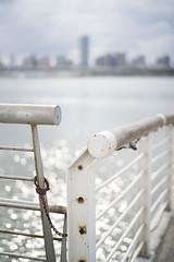 Liquid glitter (jasoncremephotography) Tags: leica m10p summilux 50mm bokeh glitter taipei taiwan sunshine