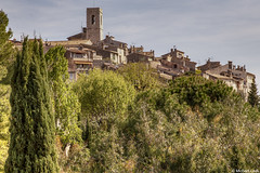 Saint-Paul de Vence; near Nice, Alpes-Maritimes, France (Michael Leek Photography) Tags: france southeastfrance french town walledtown medieval hilltown europe architecture frencharchitecture historic travel travel2019 trees landscape frenchlandscape buildings europeanarchitecture riviera frenchriviera nice mountains hills michaelleek michaelleekphotography