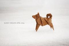 Dog designed by Hideo Komatsu (Sunny^o^) Tags: hideokomatsu dog origami sunny'sorigami