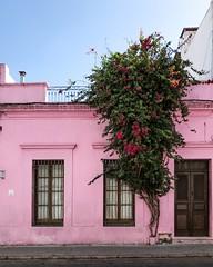 Ciudad Vieja (Irene Carbonell) Tags: montevideo uruguay uruguaynatural fachadas
