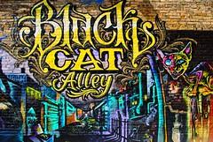 Black Cat Alley - Milwaukee (Cragin Spring) Tags: blackcatalley alley mural cat midwest milwaukee milwaukeewi milwaukeewisconsin wisconsin wi city urban unitedstates usa unitedstatesofamerica artwork art