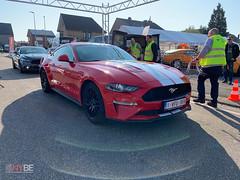 Mustang_Fever_zaterdag_-1