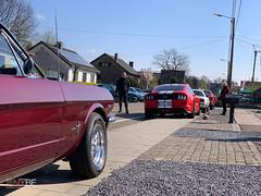 Mustang_Fever_zaterdag_-11
