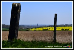 _DSC8788 (nowboy8) Tags: lincolnshire nikon nikond500 wolds rapeseed flowers horses trig trigpoint stjames church sheep fields nature