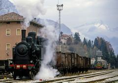 FS Gr 880 051 Belluno 23/11/1986. Foto Roberto Trionfini (stefano.trionfini) Tags: train bahn zug treni steam dampf fs gr880 belluno veneto italia italy