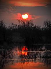 Somewhere in hell (jocsdellum) Tags: hell sunset reflexes water agua aigua capvespre atardecer puestadesol contrallum contraluz backlighting redsun nuvols clouds nubes cloudy