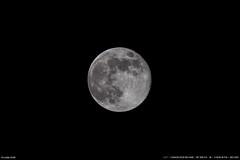 Lune d'avril (Ludtz) Tags: canon canoneos5dmkiii ef300|4lis 5dmkiii lelavandou provence moon ludtz lune fullmoon pleinelune luna