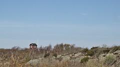 Little red house (hasor) Tags: archipelago sweden house red small tiny little blue sky grass trees island brännö göteborg gothenburg