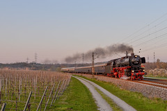 01 202 Lauffen Neckar (der_werkbahner) Tags: br 01 trainspotting