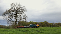 Up the hill (Duck 1966) Tags: 33102 crompton emrps tree grass diesel locomotive wagons railway foxfieldrailway climb