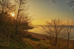 Firth of Forth (xDigital-Dreamsx) Tags: landscape river forth sunset sundown dusk